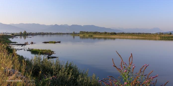 Rheinkanal mit Blick rheinaufwärts bei Km 92.0 | Vorarlberger Rheindelta, Bodensee, Österreich | 2017-08-01