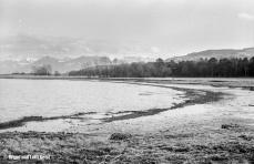 Wetterwinkel mit Blick Richtung SE zum Rheinholz und die Anhöhe bei Walzenhausen (Hintergrund rechts) | Aufnahme 12.03.1967 | Foto bereitgestellt von Bruno und Lotti Keist
