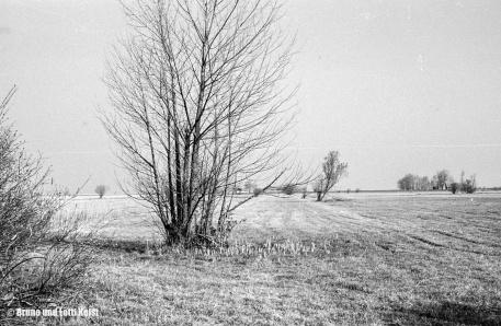 Aufnahme 17.04.1967 | Foto bereitgestellt von Bruno und Lotti Keist