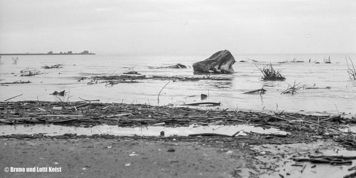 Sanddelta | Im Hintergrund der Rohrspitz, dazwischen die Fussacher Bucht | 22.08.1969 | Foto bereitgestellt von Lotti und Bruno Keist