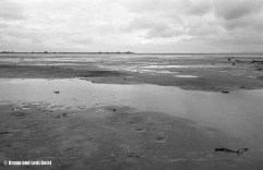 Sanddelta | Im Hintergrund der Rohrspitz, dazwischen die Fussacher Bucht | 22.11.1970 | Foto bereitgestellt von Lotti und Bruno Keist